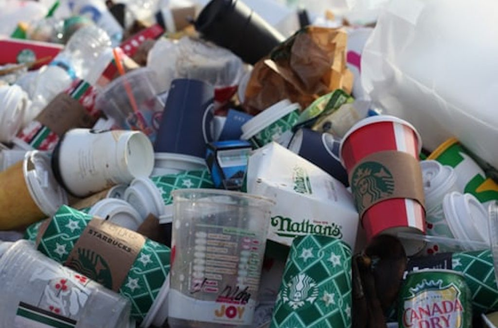 Waste Removal and Why It Is Important